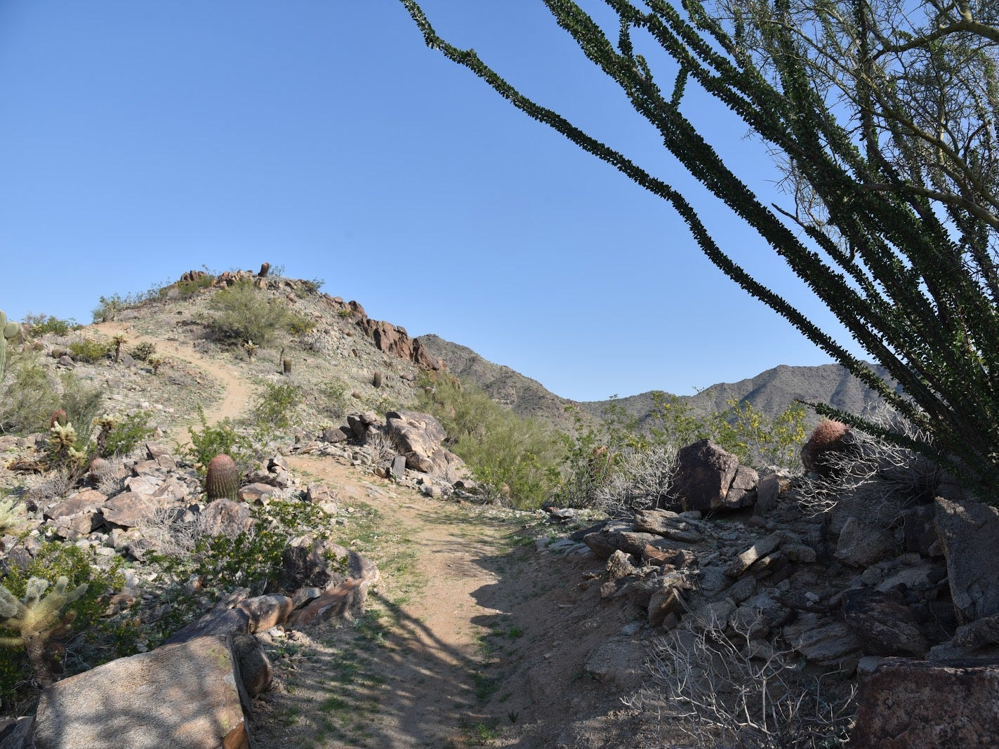 The Pyrite Trail traverses several ridges and high passes in Skyline Regional Park in Buckeye.