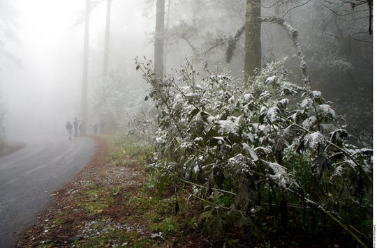 En varios puntos de México el clima fue congelante.