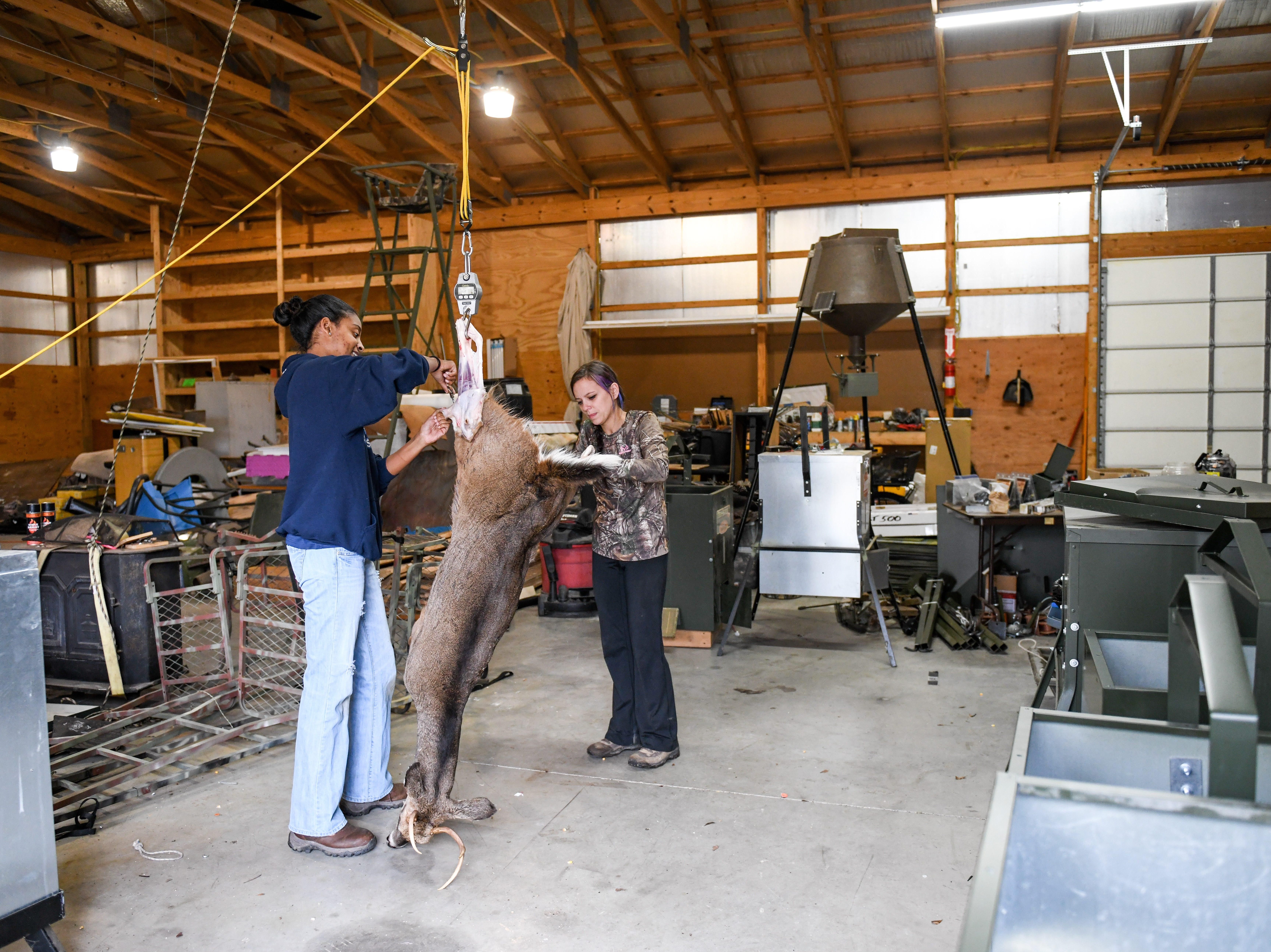 Maribeth Kulynycz and Nettiel Stewart work together to butcher a deer in Mardela Springs on Tuesday, Nov 6, 2018.
