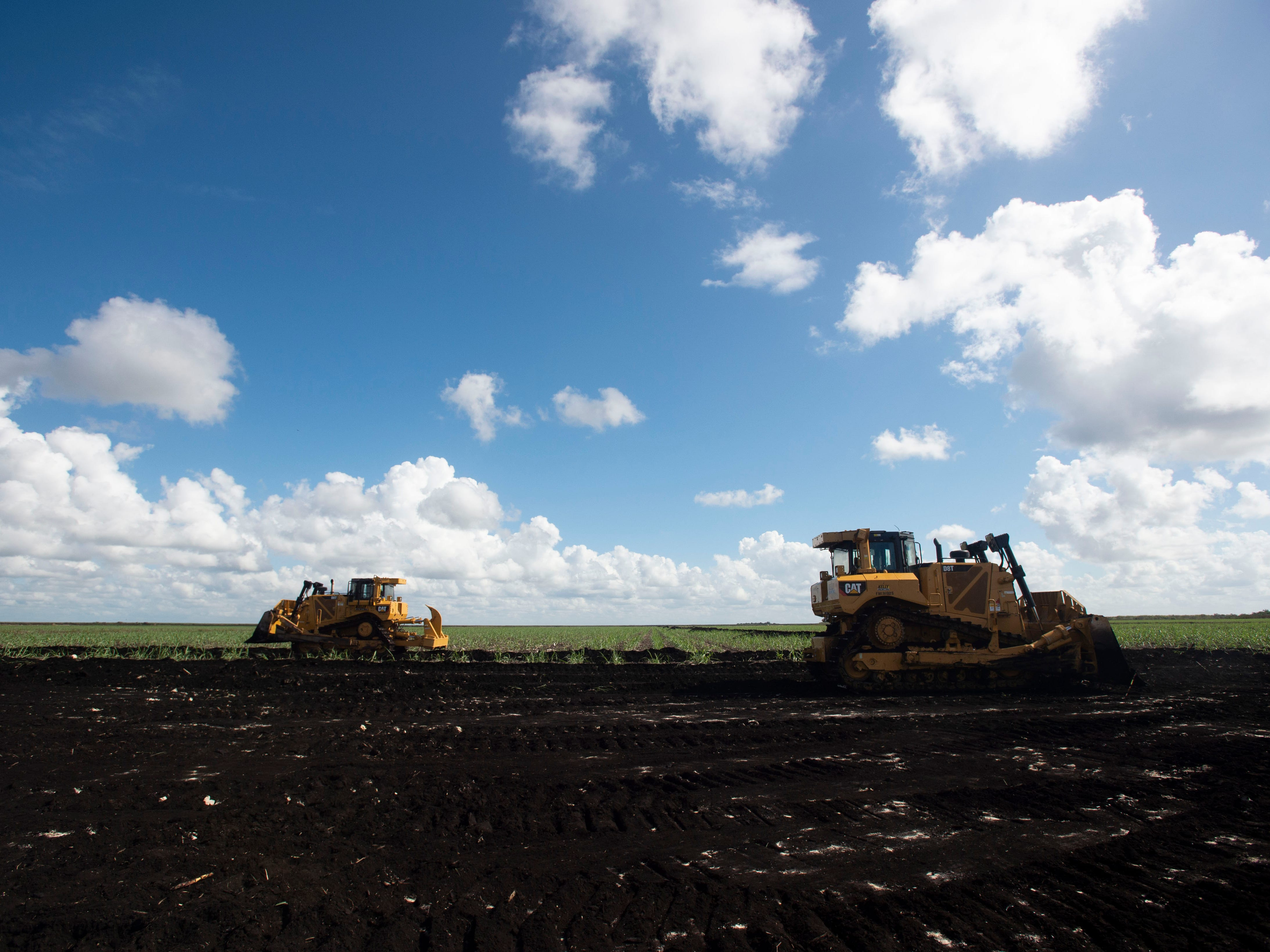 Heavy machinery bulldozes sugarcane fields on a 560-acre tract of land set to become the EAA reservoir, seen Wednesday, Nov. 14, 2018 in western Palm Beach County. Congress and President Donald Trump authorized the reservoir project in October by including it in America's Water Infrastructure Act of 2018, a list of all the water projects for the Army Corps of Engineers to do throughout the country.