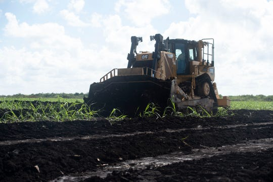 "Sugarcane fields were bulldozed as South Florida Water Management District staff announced preliminary construction of the EAA reservoir on a 560-acre tract of land at a news conference Wednesday, Nov. 14, 2018 in western Palm Beach County. Board Chairman Federico Fernandez said the water management district is ""expediting this"" project because it's ""absolutely necessary"" to move forward with constructing the 23-foot deep, 10,100-acre reservoir that will be able to store up to 78.2 billion gallons of excess Lake Okeechobee water. ""Delaying is not an option,"" Fernandez said."