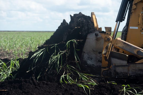 Sugarcane fields were bulldozed as South Florida Water Management District staff announced preliminary construction of the EAA reservoir on a 560-acre tract of land at a news conference Wednesday, Nov. 14, 2018 in western Palm Beach County.