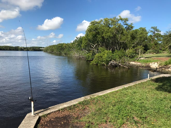 Port St. Lucie plans to construct a new section of the Riverwalk Boardwalk along the St. Lucie River near the Botanical Gardens.