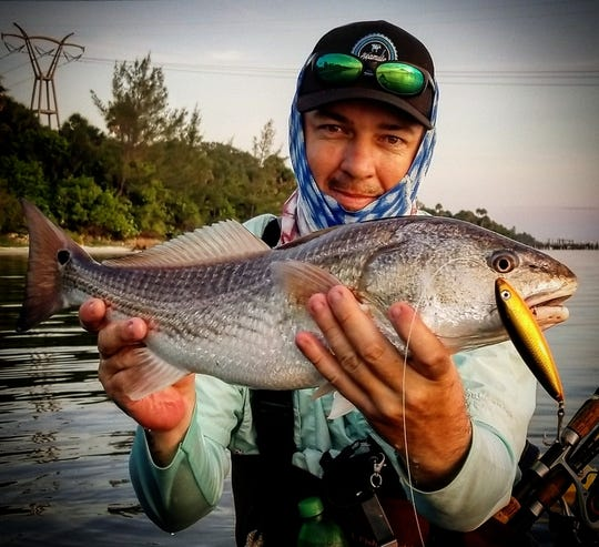 Jayson Arman of That's R Man land-based fishing charters in Port St. Lucie said the redfish action in the Indian River Lagoon has been good, even on topwater plugs.