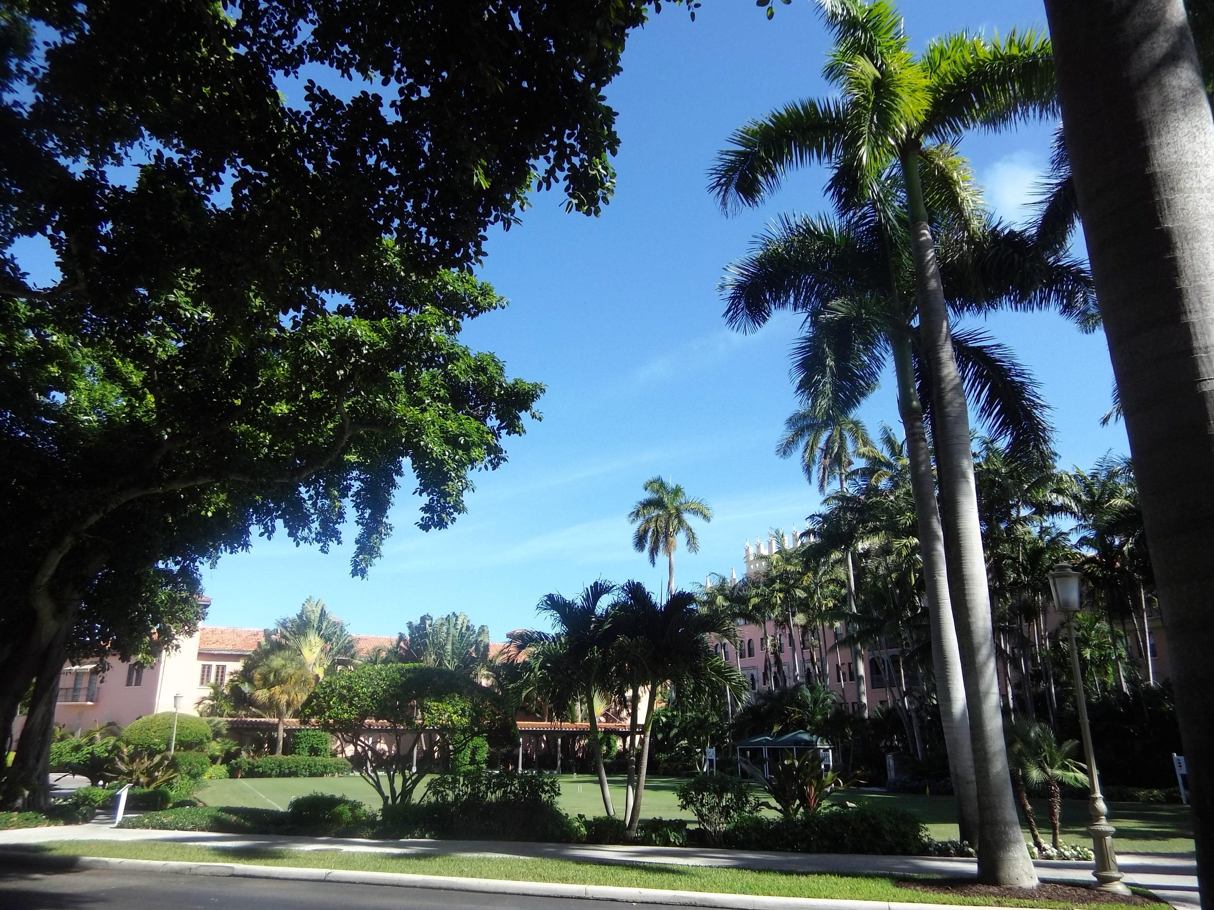 Lush foliage at Boca Raton Resort & Club.