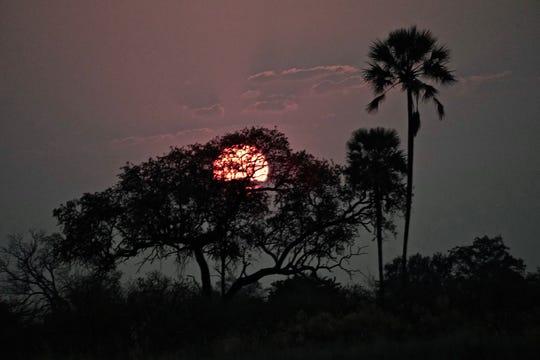 Sunset in Botswana's Okavango Delta.