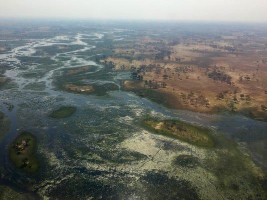 Xxx Botswana Endangered Species Dec 277 Jpg