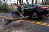 State Troopers and Craytonville fire fighters near Belton clear a tree that was struck in the road by a Nissan Altima Thursday morning.