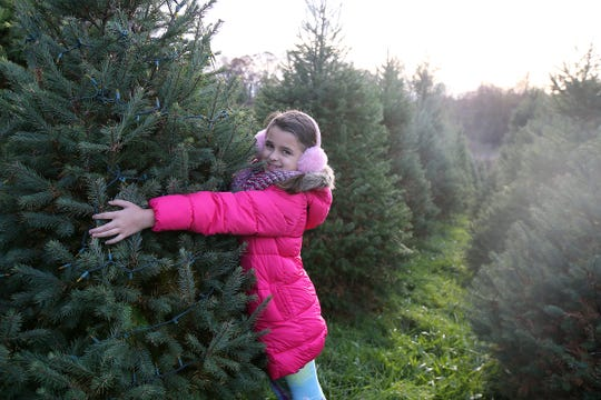 Natalie Gorsegner, 9, a childhood cancer survivor, hugs her tree as decorates the two Christmas trees she has been caring for since they sprouted with her sister Hannah Gorsegner, 11, at Cedar Hill Farm and Nursery in Middletown, NJ Wednesday, November 14, 2018.