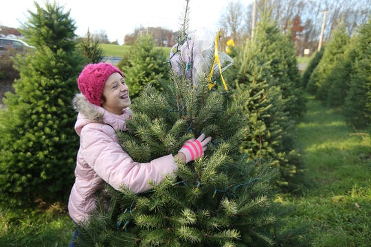 Hannah Gorsegner, 11, hugs her Christmas tree as she decorates the two Christmas trees she has been caring for since they sprouted with her sister Natalie Gorsegner, 9, a childhood cancer survivor, at Cedar Hill Farm and Nursery in Middletown, NJ Wednesday, November 14, 2018.