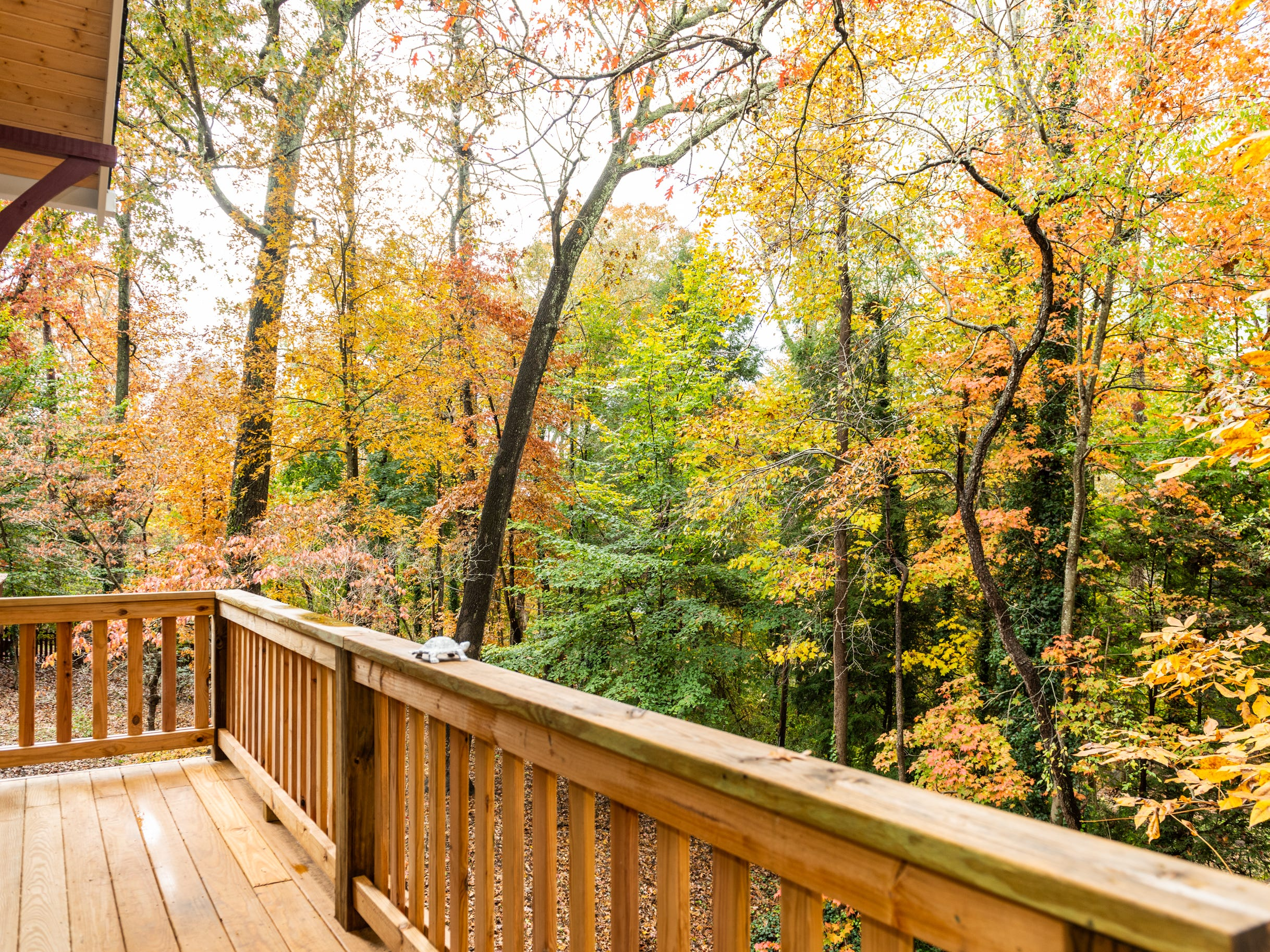 Back deck overlooking fall colors at the home of Pat and Ron Hart in Asheville's Montford neighborhood.