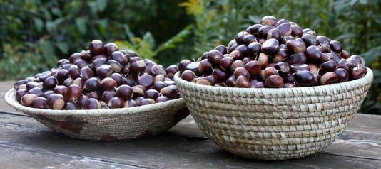 Chestnuts For Stuffingsg Seguret