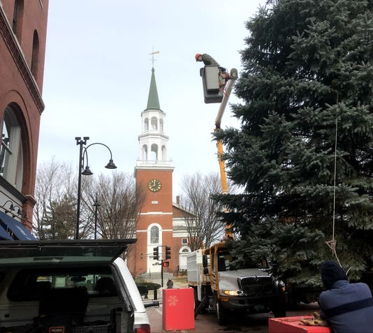 Bur20181115 Church St Tree 03c