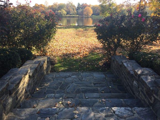 Camden County plans to create an open-air wedding pavilion on this field jin Cooper River Park, Pennsauken.