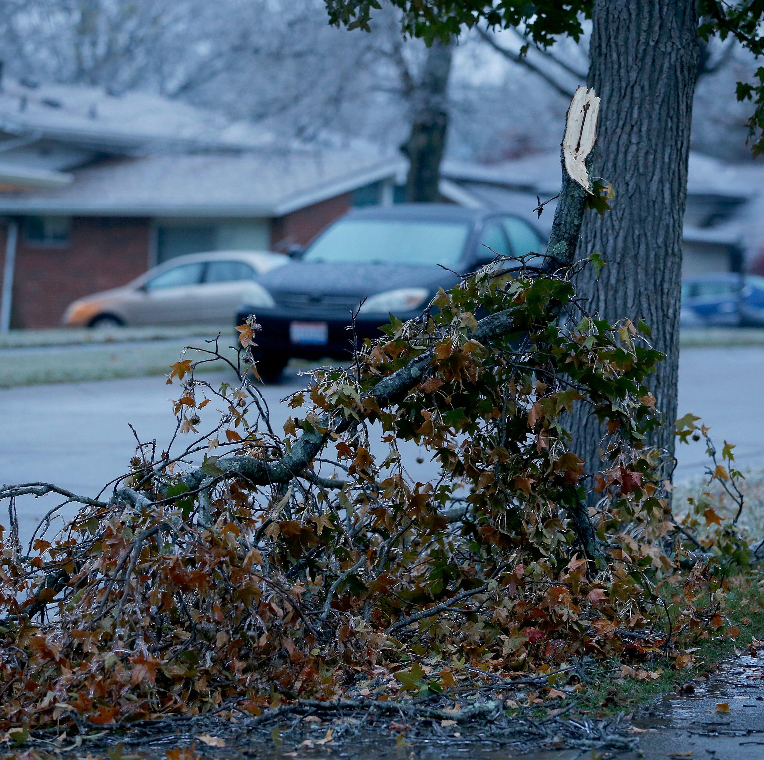 Ice caused a tree limb to break on Cascade Road...