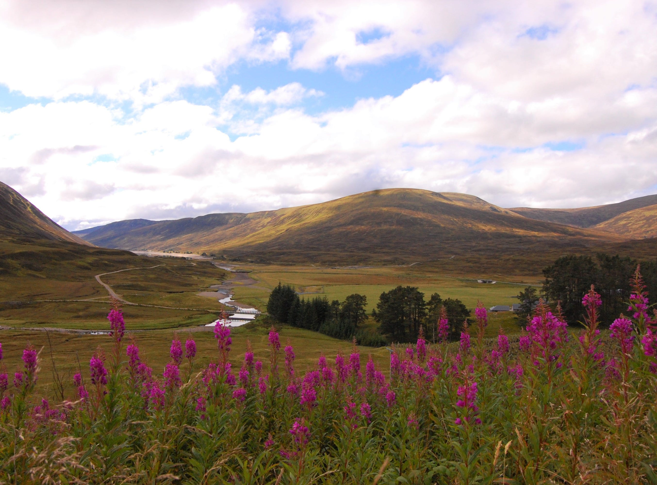 Gorgeous views abound on a road through the Highlands in Scotland. I stopped the car to gawk at the vistas quite often.