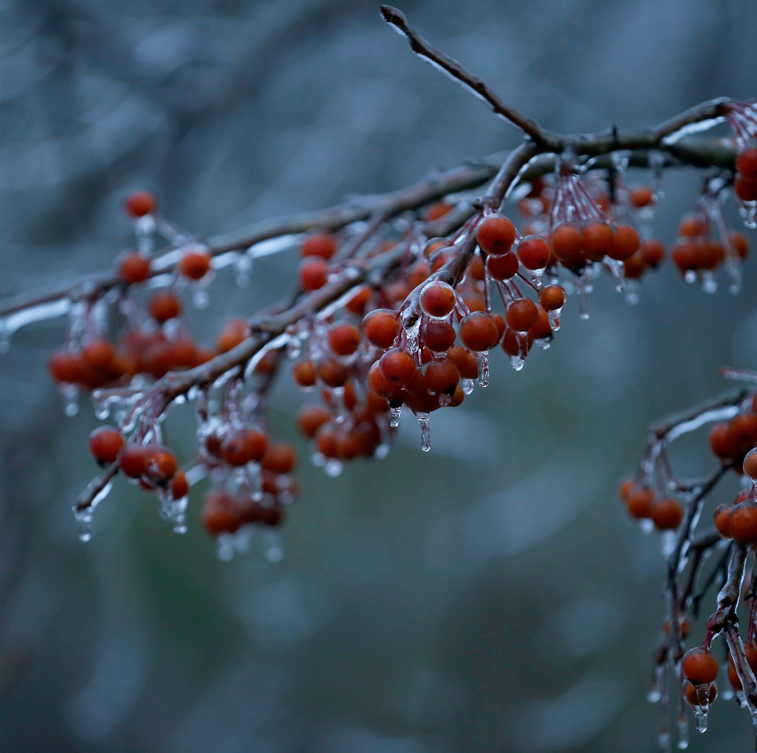 Freezing rain today. Then, snow/sleet, near-zero temps ... wait, there's more