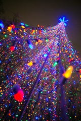 More than 300,000 lights are strung throughout Green Bay Botanical Garden for Garden of Lights, its biggest fundraiser of the year.