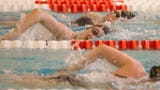 Brighton swimmers talk about their expectations for the state meet.
