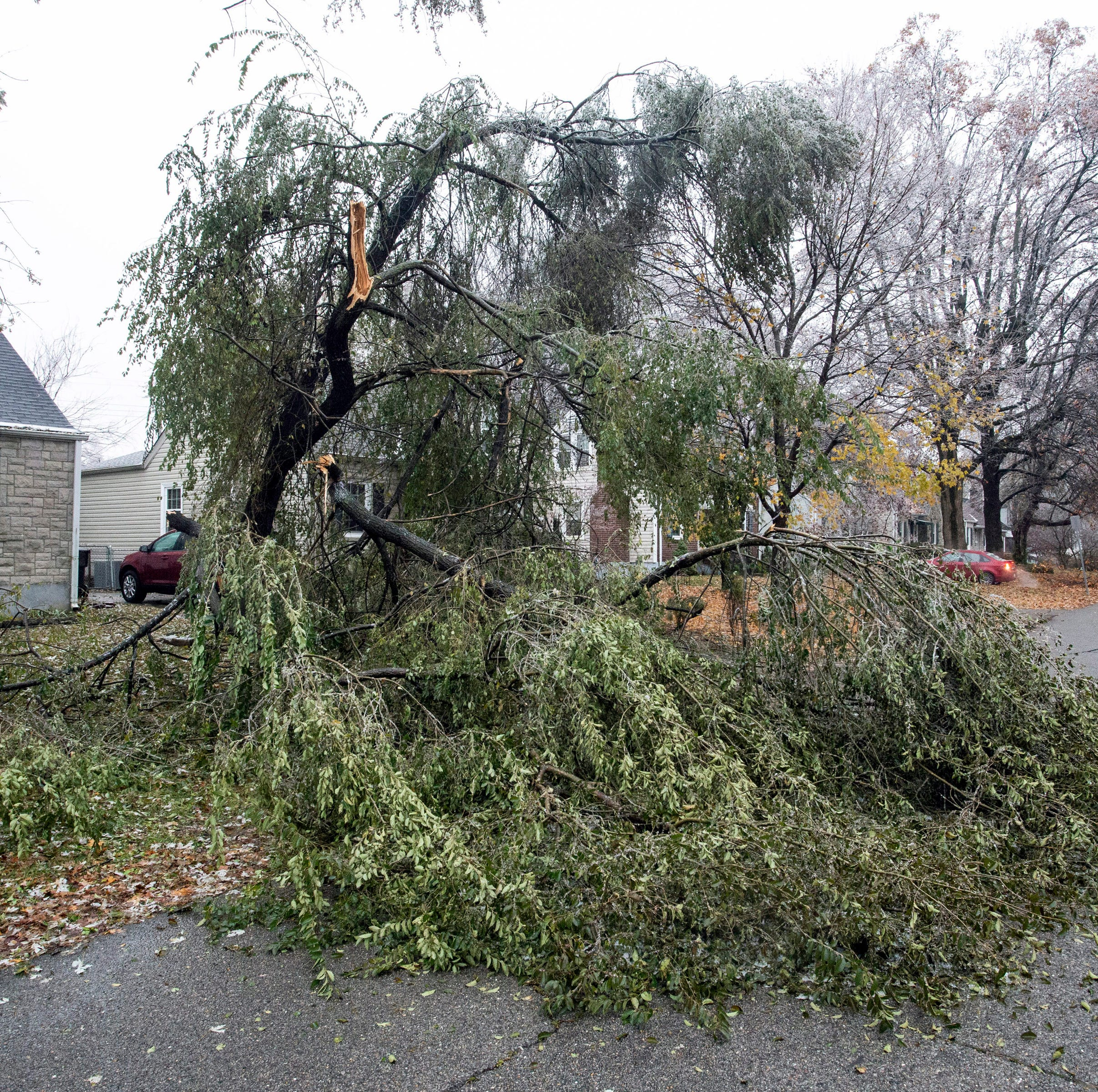 Tree-snapping storm leaves thousands of homes, JCPS students in the dark