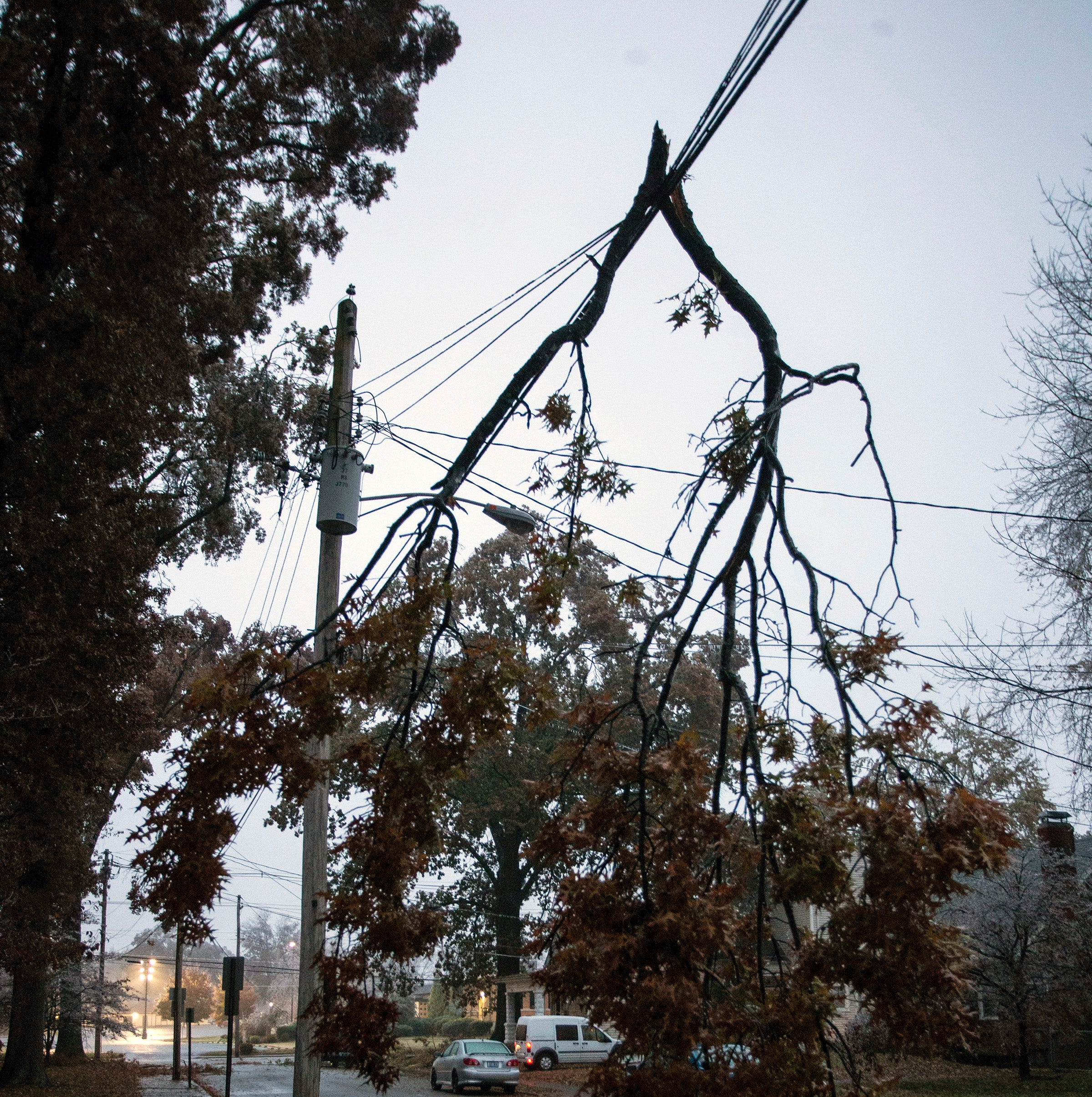 Why don't we bury power lines in Louisville to prevent blackouts?