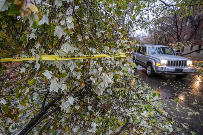 A vehicle drives around downed branches on Lee Street on Thursday morning after freezing rain and sleet moved through the area overnight.