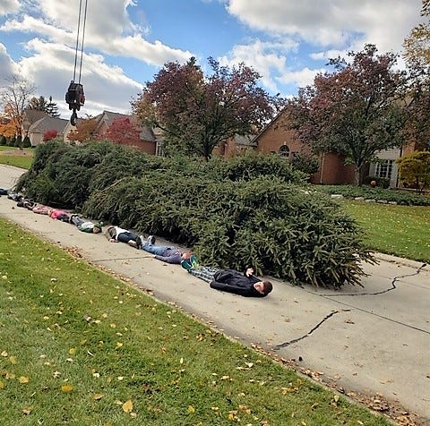 To provide a unique perspective of the tree's height, Deer Creek subdivision children lined up next to the tree prior to its delivery to downtown Detroit.