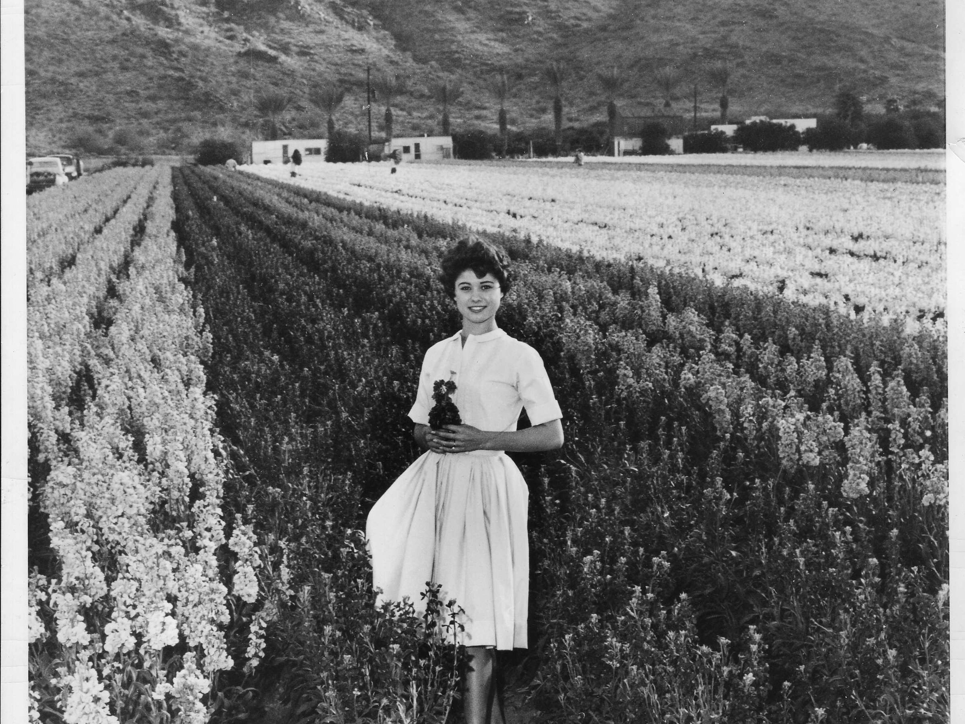 A woman stands in a Japanese flower garden in Phoenix in this 1962 photo.