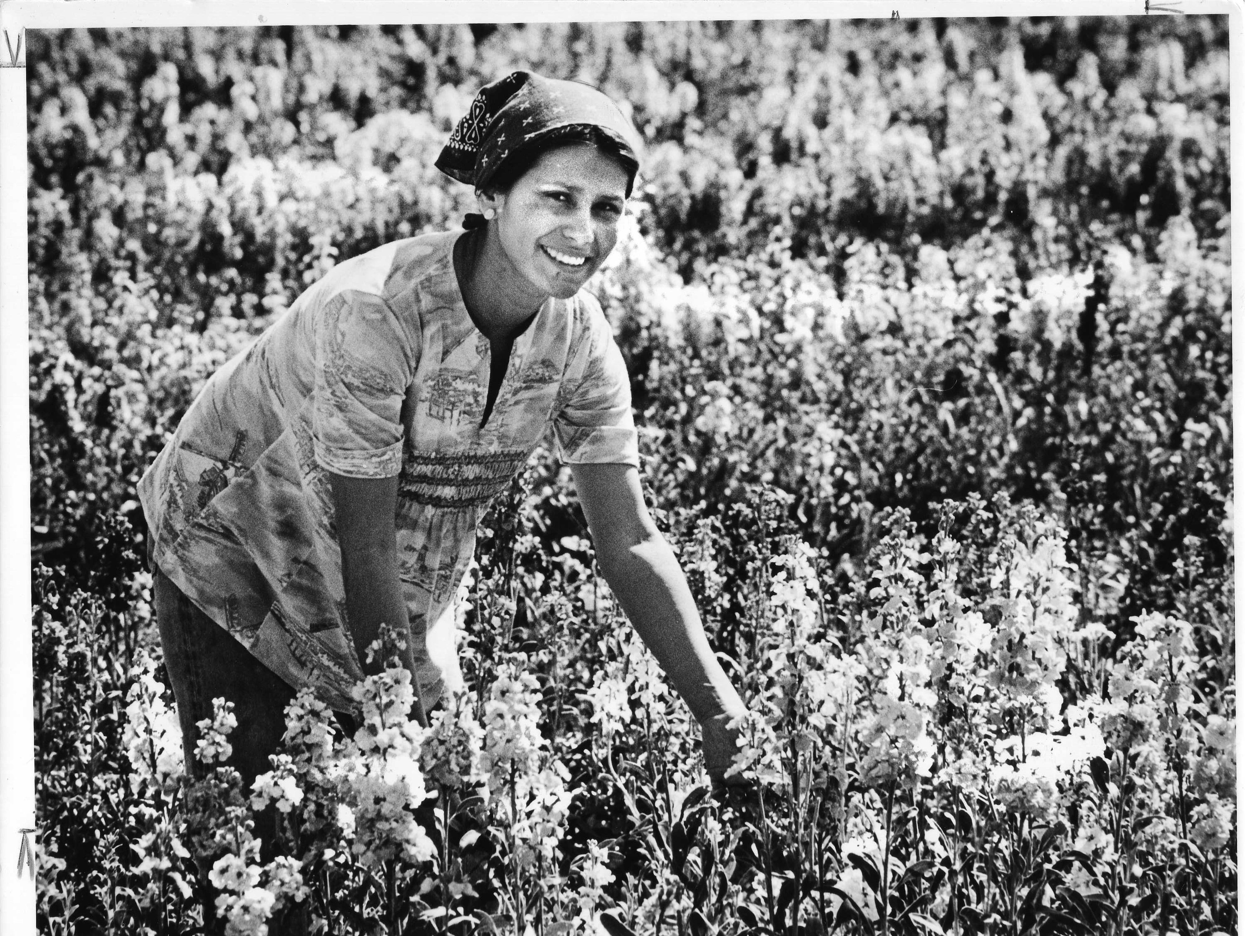 Mary Galindo is seen in a Japanese flower garden near Baseline Road in Phoenix in 1979.