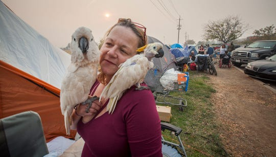 Suzanne Kaksonen, of Paradise, snuggles with Buddy, left and Lady Bird next to their tent in a make-shift compound next to the Walmart in Chico, CA, Wednesday, November 14, 2018. Kaksonen lost her home in the Camp Fire but feels blessed to have saved her dogs and her two 31-year-old cockatoos.