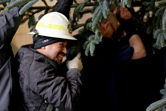 Mario Lara smiles as he helps put up the annual Christmas tree at the Oregon State Capitol on Thursday, Nov. 15, 2018. The 30-foot noble fir is from Clatsop State Forest.
