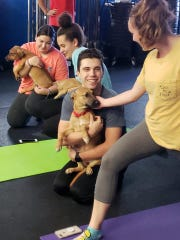Doggy Noses & Yoga Poses hosts an event at Crossfit Towson in Towson, Maryland last month benefiting New Castle-based Brandywine Valley SPCA.