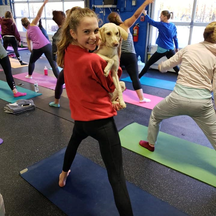 Get two kinds of growlers -- 4-legged and bottled -- at Delaware brewery's doggy yoga