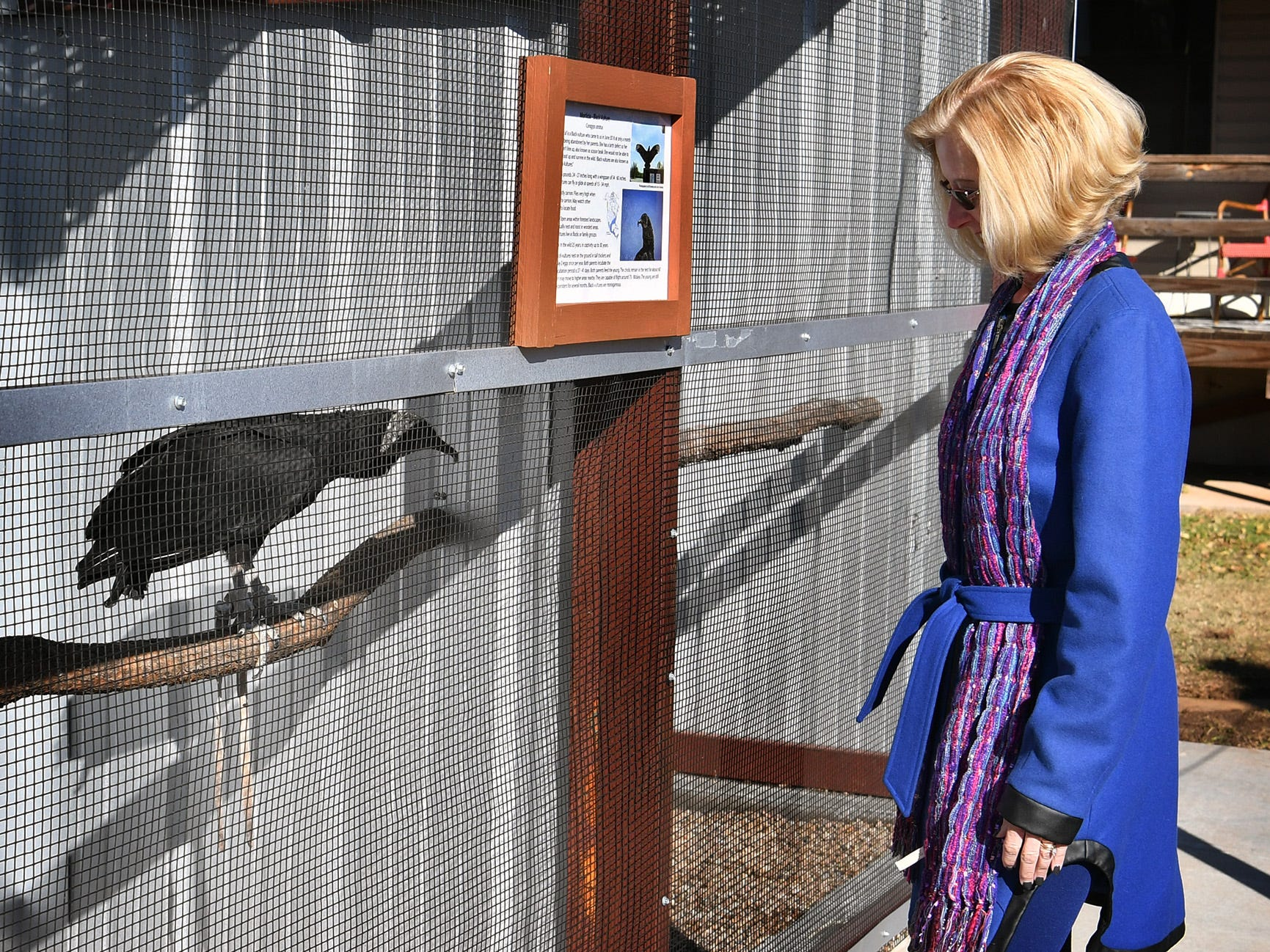 Gemma Spruiell tours the new Exhibit and Education building at Wild Bird Rescue Thursday monring.