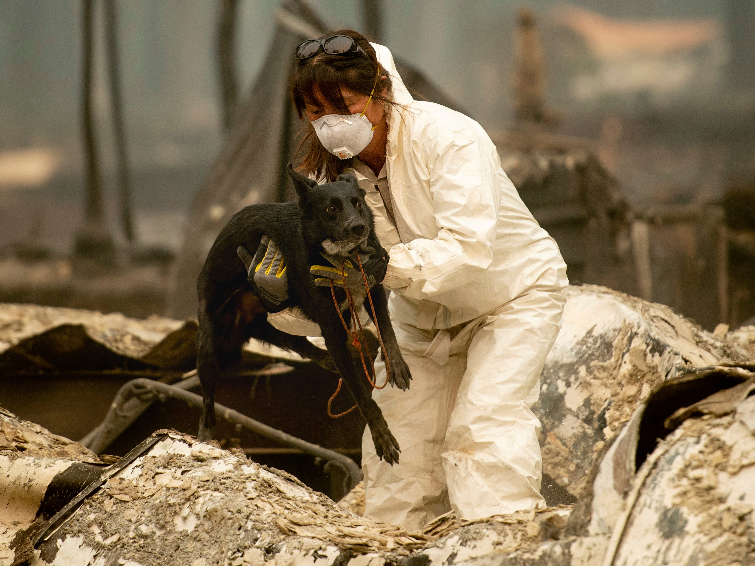 A search and rescue worker, looking for Camp Fire victims, carries Susie Q. to safety after the cadaver dog fell through rubble at the Holly Hills Mobile Estates on  Nov. 14, 2018, in Paradise, Calif.