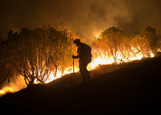 Image result for wild fire