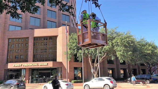 Two beekeepers in a crane bucket removed 10 hives from the Windsor Apartment Homes on Friday, Nov. 16, 2018.