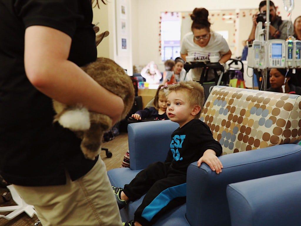 Rowan Snyder, 2, looks at Radar the Flemish giant rabbit at C.S. Mott Children's Hospital in Ann Arbor on Nov. 15, 2018.