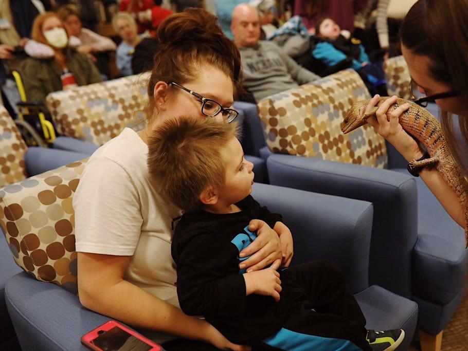 Rowan Snyder, 2, looks at  a blue-tongued skink at C.S. Mott Children's Hospital in Ann Arbor on November 15, 2018.