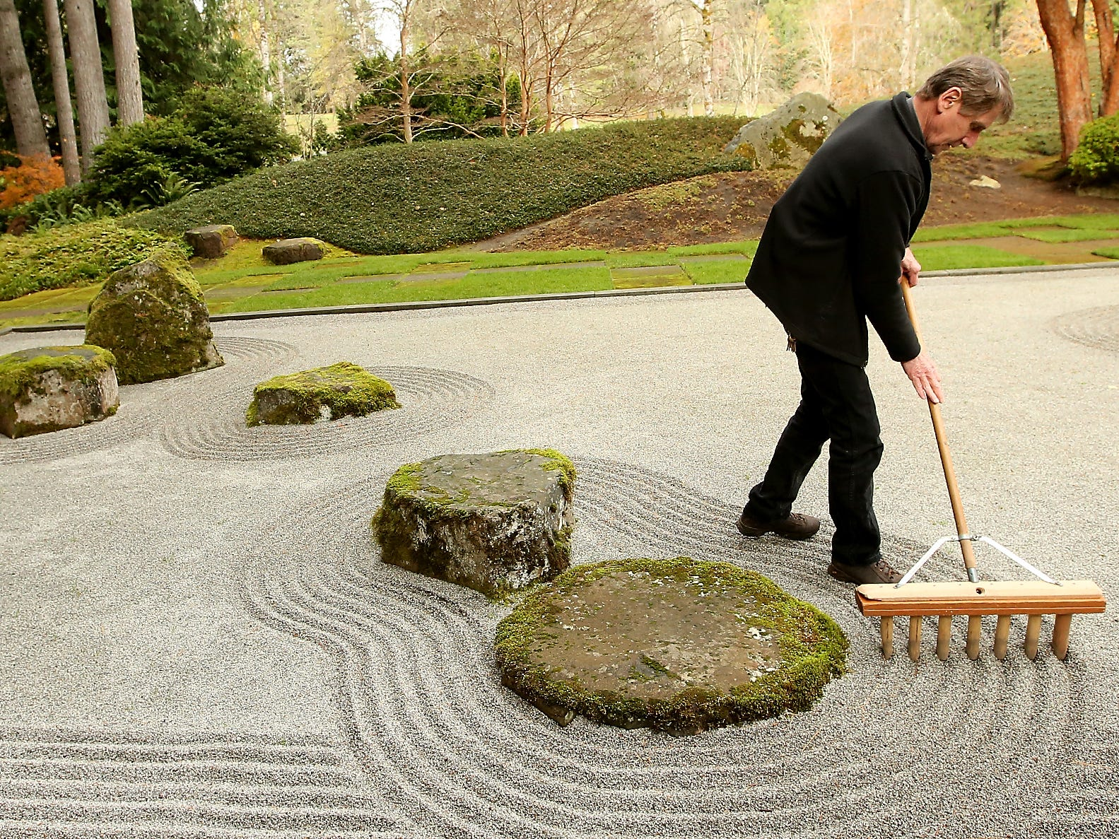 Bloedel Reserve caretaker Bob Braid rakes the rocks of the meditation garden into a design as he gets the Japanese Garden portion of Bloedel ready for visitors on Friday, November 16, 2018.