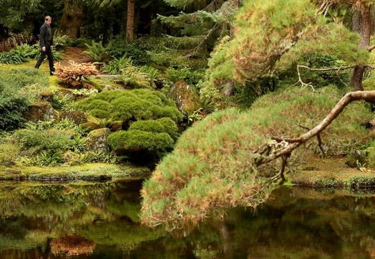 Bob Braid was introduced to Japanese gardens while stationed there with the Air Force. He went to work at the Bloedel property in 1985, before it was open to the public.