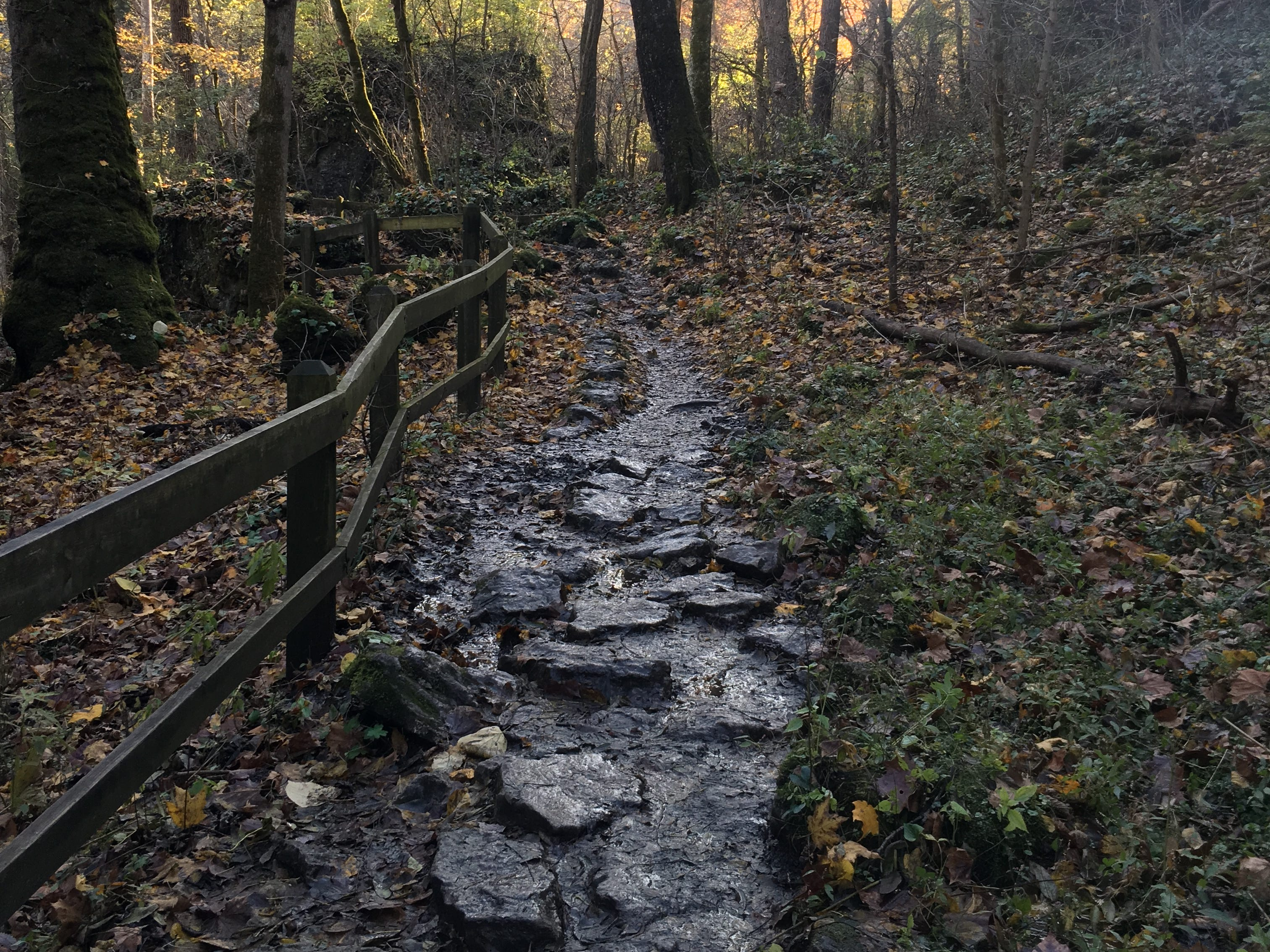 A path winds along with the Little Miami River in Clifton Gorge State Nature Preserve.