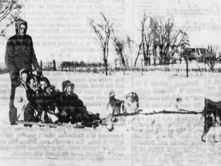 From March 12, 1960 Des Moines Tribune: What with Iowa's winter being so rough this year, members of the Tom Eness family find the northern sled dogs they raise on their farm southwest of Story City are mighty useful. Shown on a dogsled ride are the six Eness children: Harvey, 16 (standing); Esther, 15; Ida, 13; Ingborg, 12; Erik Ole, 7; and Torvald, 6.