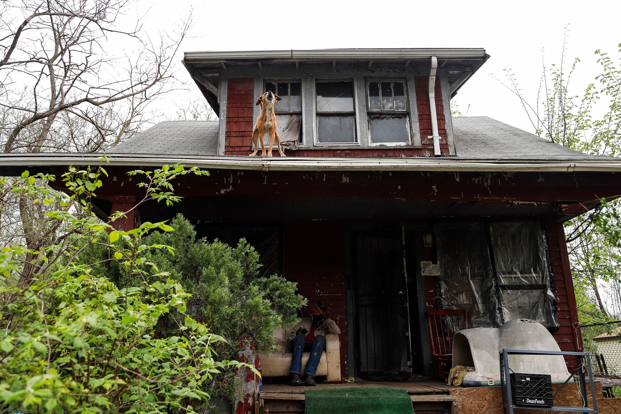 Sugar jumped out of a window in May to confront three strangers approaching this Detroit Land Bank Authority house in the 11400 block of  Mendota on Detroit's west side. (Photo taken May 10, 2018)