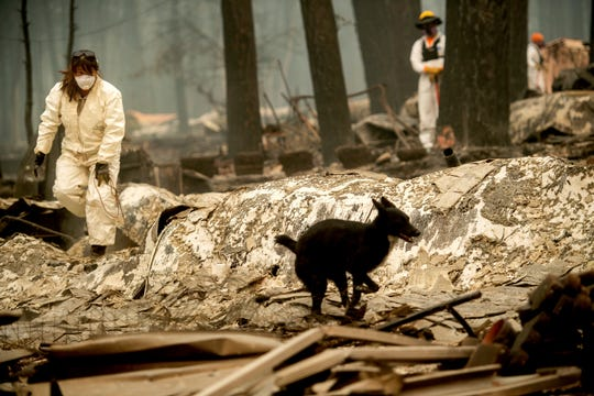 Search and rescue workers look for bodies of Camp Fire victims at the Holly Hills Mobile Estates on Wednesday, Nov. 14, 2018, in Paradise, Calif.