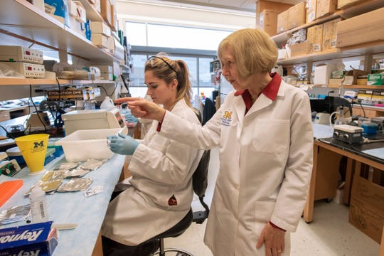 Dr. Eva Feldman, director of the Program for Neurology Research and Discovery, right, works with research associate Maegan Tabbey at Feldman's lab inside the Taubman Biomedical Science Research Building at the University of Michigan.