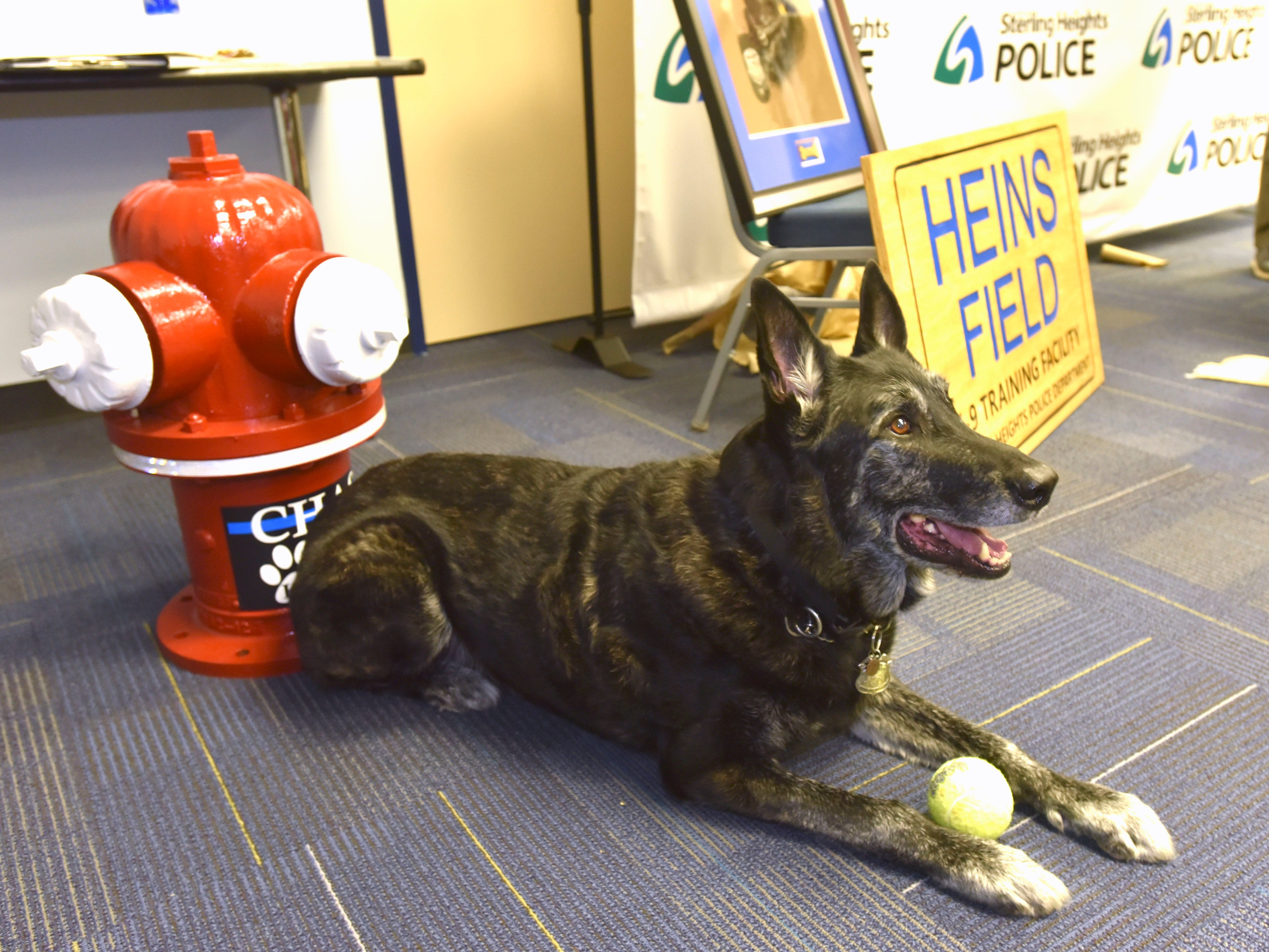 Chase poses for photographers in front of retirement gifts, which include a fire hydrant from the Sterling Heights Fire Department and Department of Public Works, a painting from the officers of his training group and a Heins Field K-9 Training Facility sign that will be displayed at the training facility at Baumgartner Park in the city.