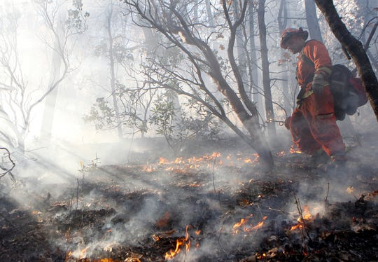 FILE - In this Nov. 23, 2015, file photo, an inmate from the Trinity River Conservation Camp watches over a prescribed burn on Mule Mountain in the Swasey Recreation Area near Redding, Calif. Creating fire buffers between housing and dry grasslands and brush and burying spark-prone power lines underground would give people a better chance of surviving wildfires, experts say. So would controlled burns, a proven, historic practice that has been neglected in recent decades. (Greg Barnette/The Record Searchlight via AP, File)