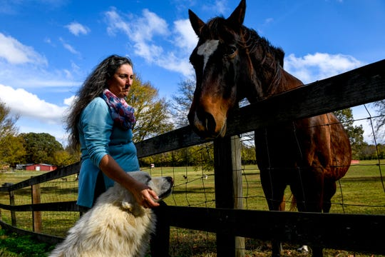 Valeria Pitoni, left, rubs the ear of her Great Pyrenees Dusty while their horse Geronimo visits them at the edge of the pasture at Stillwaters Farm in Henderson, Tenn., on Monday, Nov. 5, 2018.