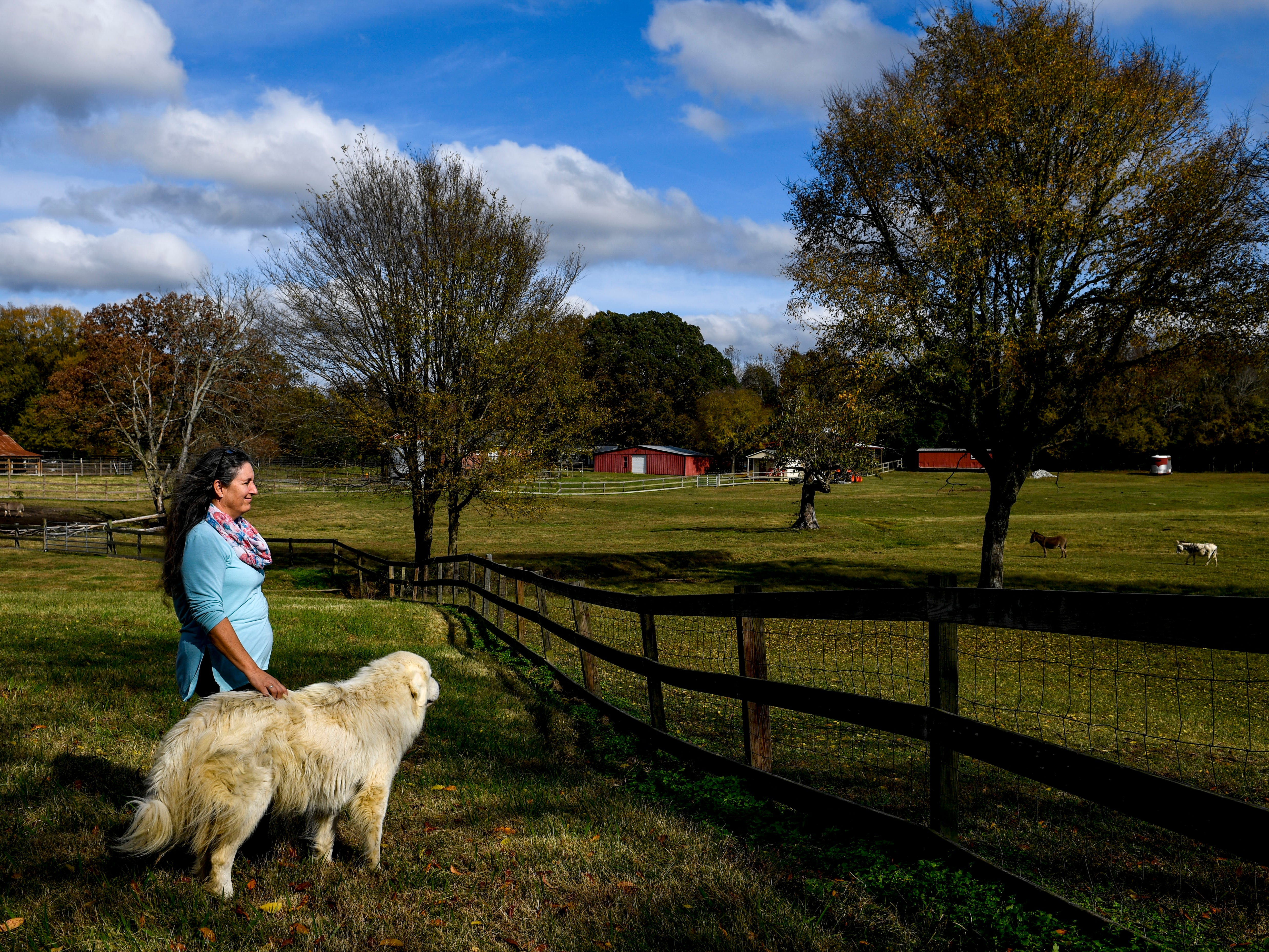 Valeria Pitoni stands with her Great Pyrenees Dusty in front of a fence separating the pasture from a smaller field for guests at Stillwaters Farm in Henderson, Tenn., on Monday, Nov. 5, 2018.